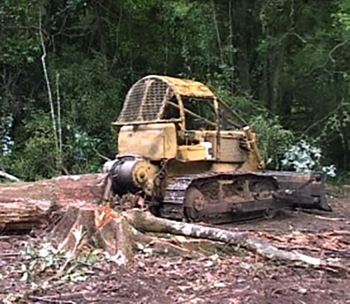 Bulldozer with felled tree in rainforest
