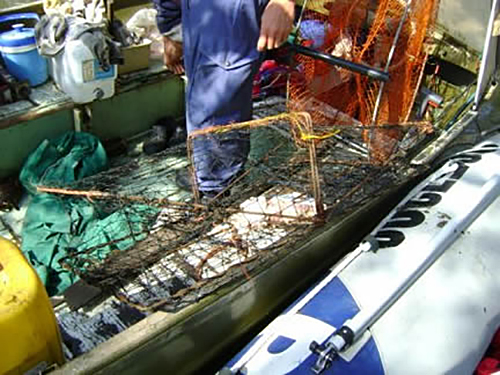 Fishing gear located in the offender's vessel