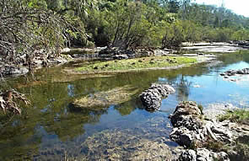 Riverbed of the Burnett River at the site of the Paradise Dam wall in September 2002 (prior to construction of the dam)