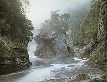Morning Mist, Rock Island Bend, Franklin River, South-West Tasmania