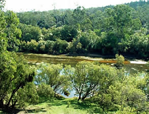 Burnett River at the site of the Paradise Dam wall in September 2002 (prior to construction of the dam)