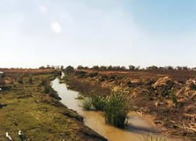 Windella Ramsar wetland after clearing